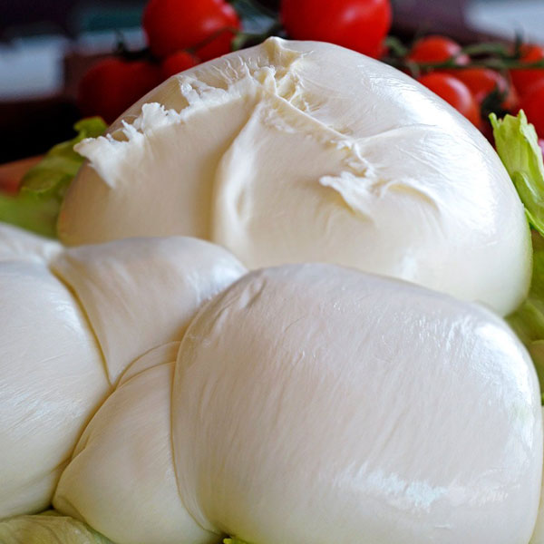 The PDO Buffalo Mozzarella