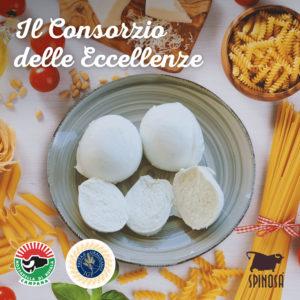 Mozzarella di Bufala Campana e Pasta di Gragnano: il Consorzio delle Eccellenze